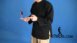 Skin the Gerbil Yoyo Trick